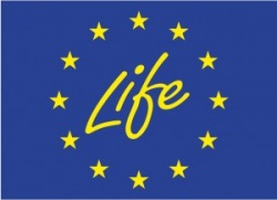 life_logo copy 2_0.jpg